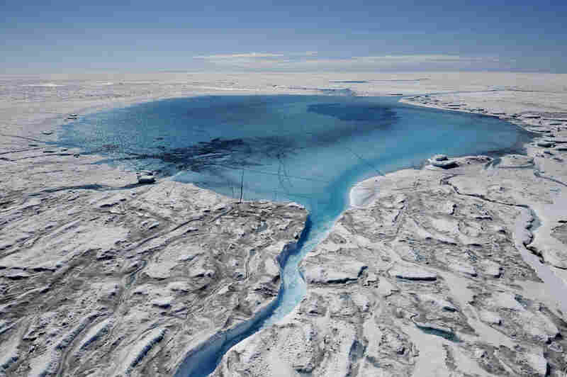 The Greenland Ice Sheet is an enormous body of ice covering almost 80% of Greenland's surface.  It has experienced record melting in recent years, evident in this expanding meltwater lake, for example.