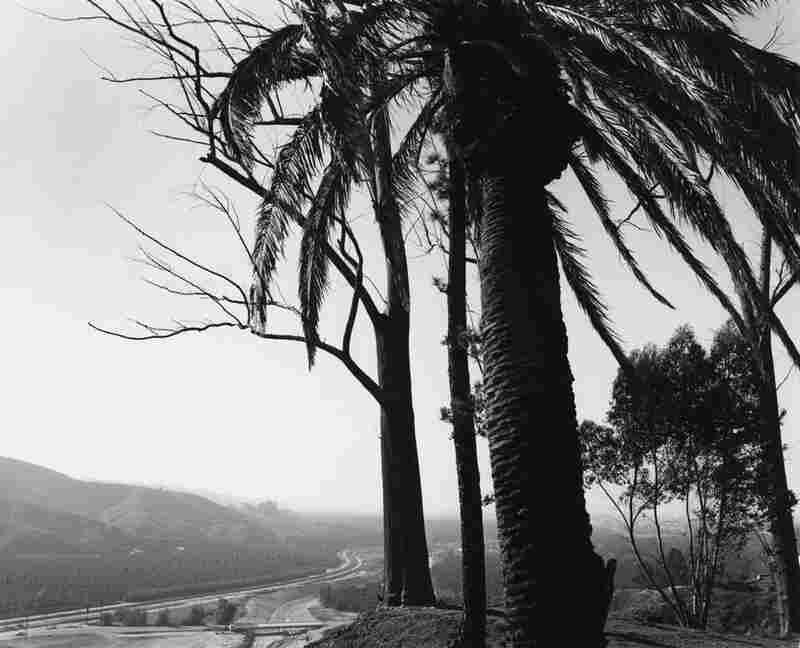 Redlands, looking toward Los Angeles across San Timoteo Canyon, San Bernardino County, Calif., 1978.
