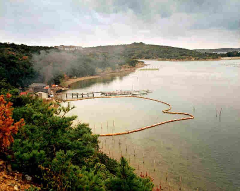 Fire, Ise-Shima, 2004 (c) Emily Shur