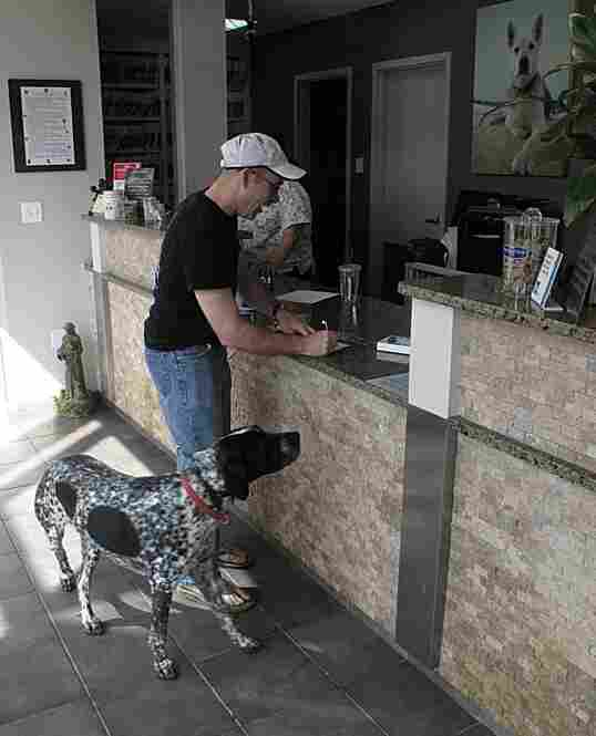 Jack Hughes pays the bill at Suburban Animal Hospital. Zeke admires the art.