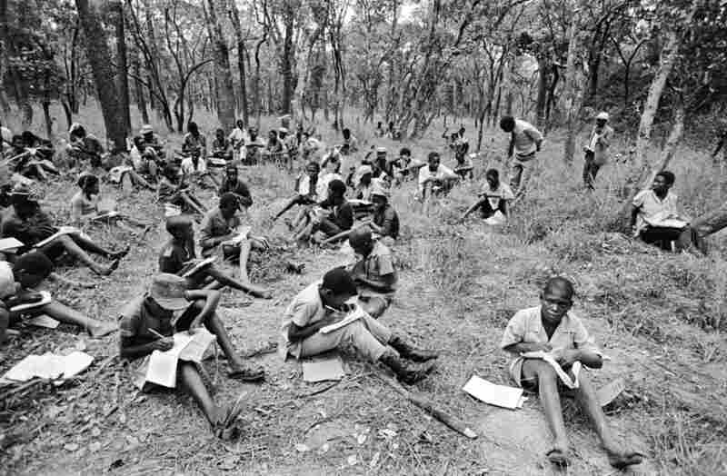 For lack of a school building, the inmates of the Solwezi camp for boys attend lessons in the nearby forest, Zambia, 1979.