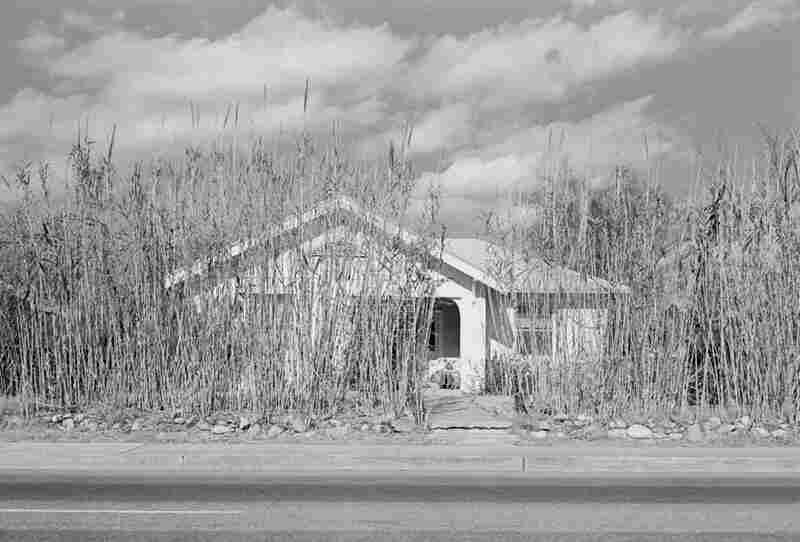 Tucson, Ariz., 1974, Henry Wessel Jr.