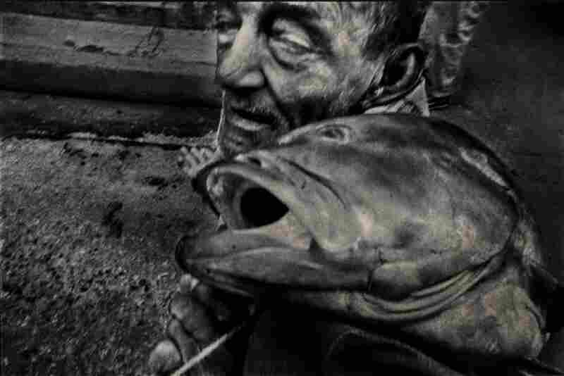 "This is one of Bazan's favorite images because ""you don't know who is more dead, the fisherman or the fish."""