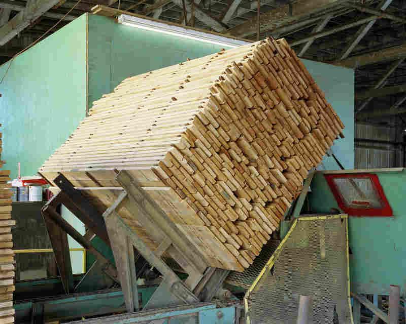 Stacked alder boards, Seaport Lumber, South Bend, Wash.