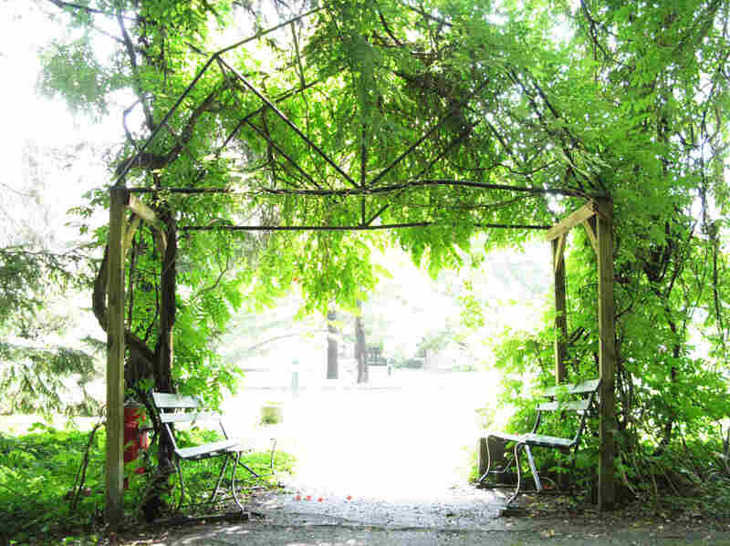 Here monks live and work in accordance with Benedictine tradition.  In the monastery's outdoor garden, an arbor shines in mid-afternoon sunlight.