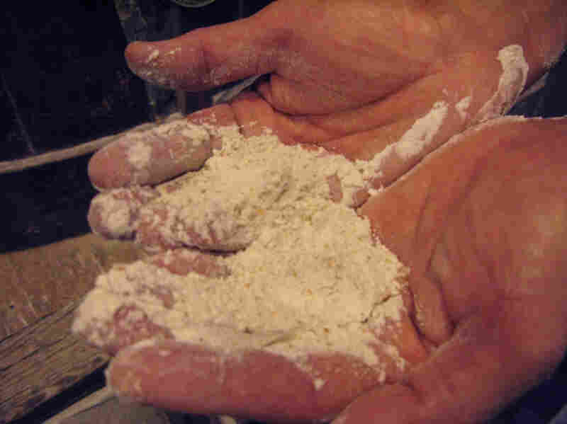 Brother Francis displays a handful of freshly-ground flour.  After grinding, the flour is separated and bagged as whole wheat flour or refined into white flour.