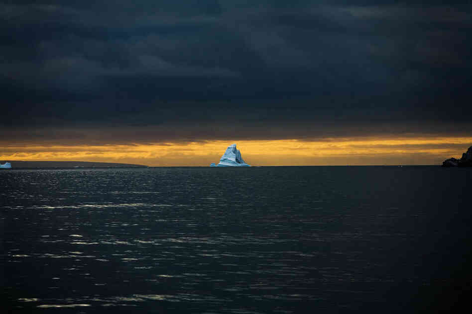 All photos by Sebastian Copeland, from Antarctica: A Global Warning