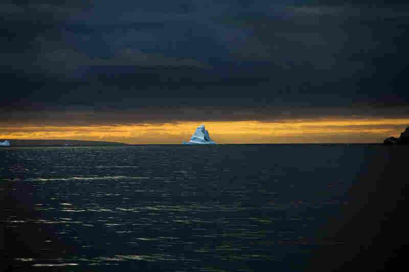 All photos by Sebastian Copeland, from Antarctica: A Global Warning