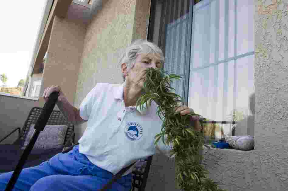 Margo Bouer, an advocate for medical marijuana, sniffs a plant she's grown on the deck of her home in Laguna Woods, Calif.