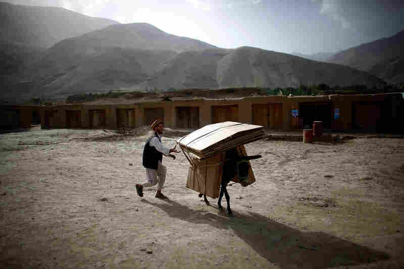 The second democratic presidential election in Afghanistan will take place Thursday. An election official chases a runaway donkey carrying cardboard polling booths, which will be delivered to remote areas of Afghanistan for voting.