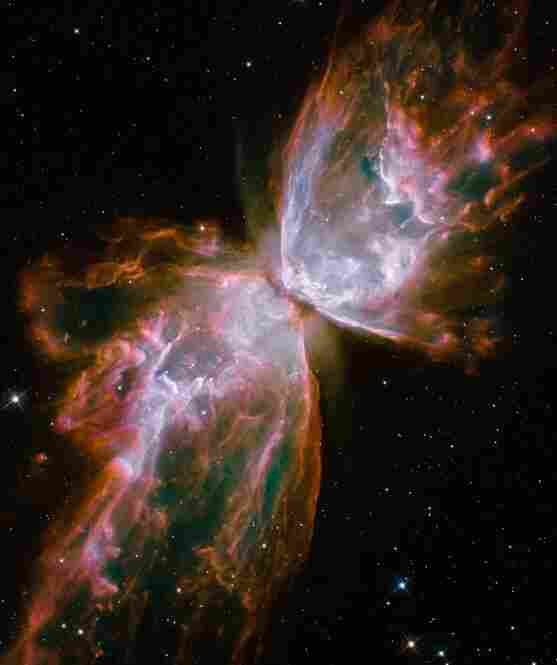 "This seemingly delicate butterfly nebula is actually made of ""roiling cauldrons of gas heated to more than 36,000 degrees Fahrenheit,"" as NASA puts it. At its center is a dying star that was once about five times the mass of the sun. The image was taken in May 2009 with the Wide Field Camera (WFC3), a new camera aboard Hubble."