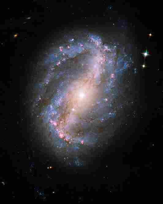 The barred spiral galaxy NGC 6217 is located 6 million light years away in the north circumpolar constellation Ursa Major. Captured on June 13, 2009, this was the first image taken by the newly repaired Advanced Camera for Surveys (ACS).
