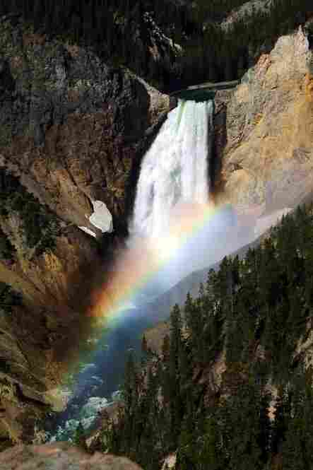 Lower Falls of the Yellowstone River, Yellowstone National Park