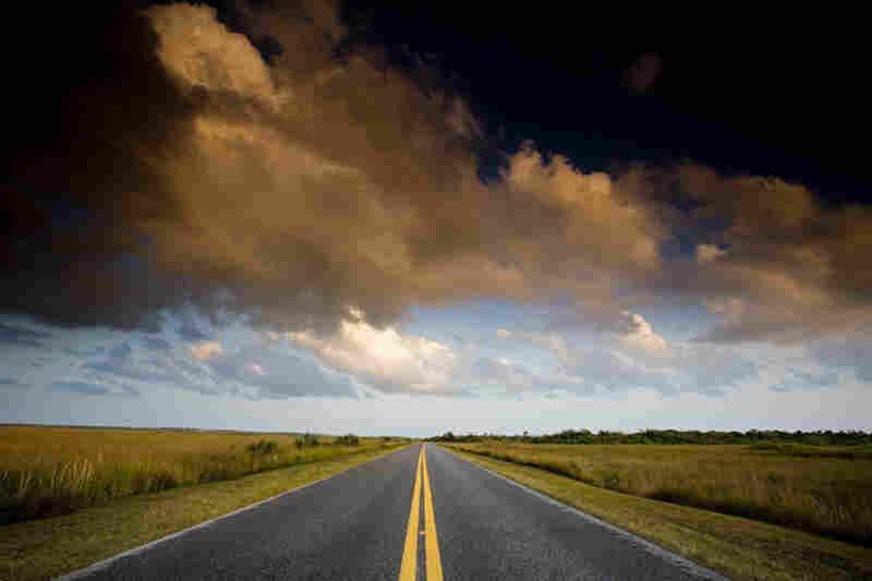 Road through tall grass prairie, Everglades National Park, Fla.