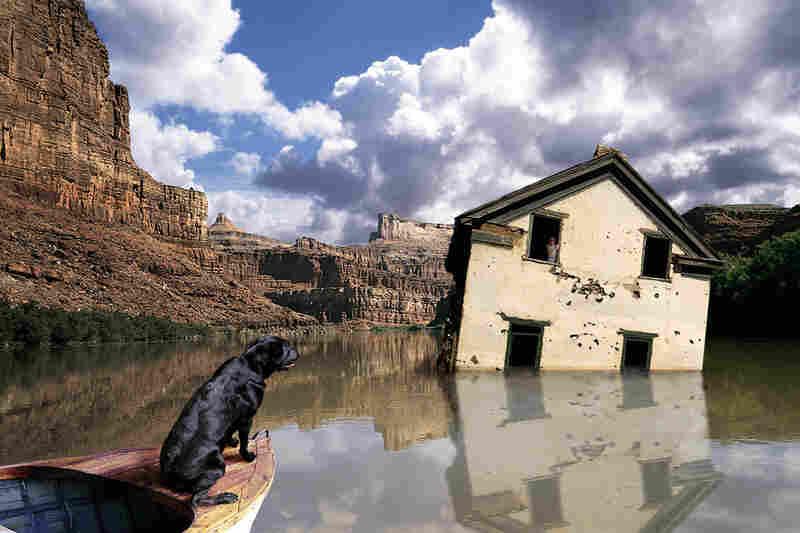Black Dog's Retreat, 2002