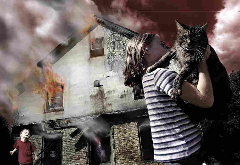 Fire Cat, 2001