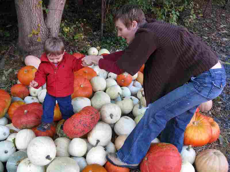 "Ian and his mom, Heather, missed the nearby sign that instructed, ""No climbing or walking on pumpkins."""