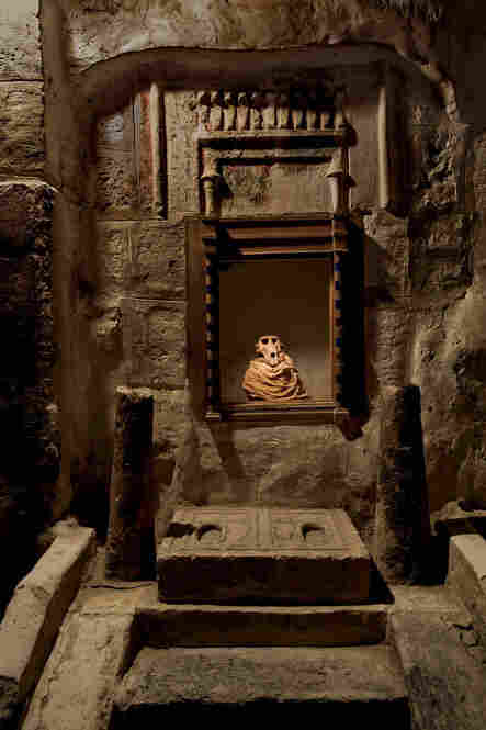 A sacred baboon was enshrined after death in the Tuna el-Gebel catacombs.