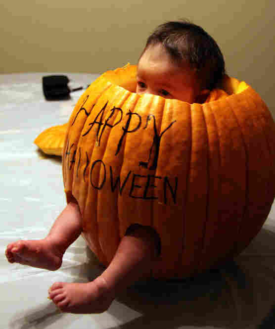 Now, just hitch the pumpkin to a balloon and ...