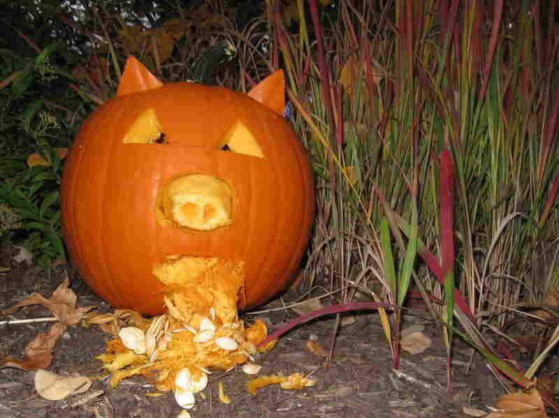 Swine flu pumpkin by Kelli.