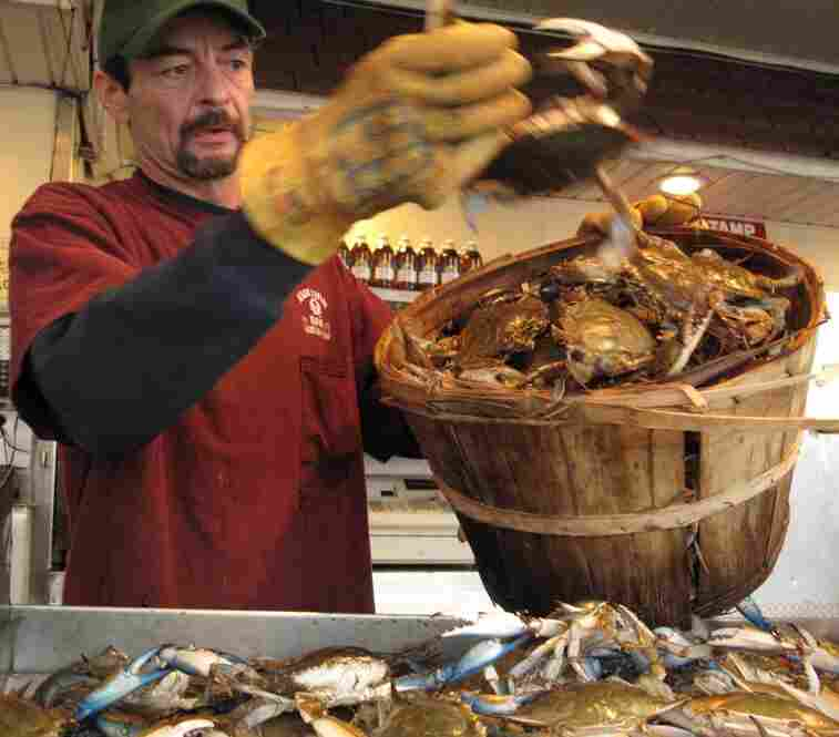 Patrick Donahoe sorts a bushel of crabs at the Jessie Taylor Seafood stand.
