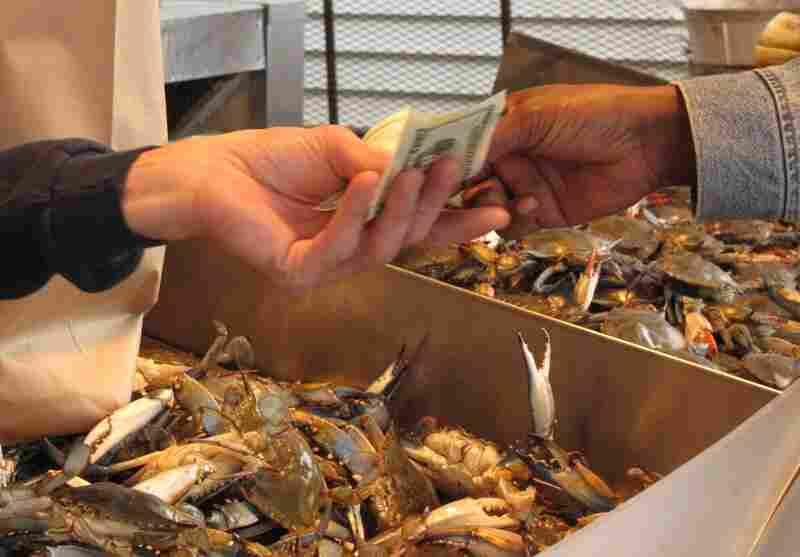 Crab commerce.