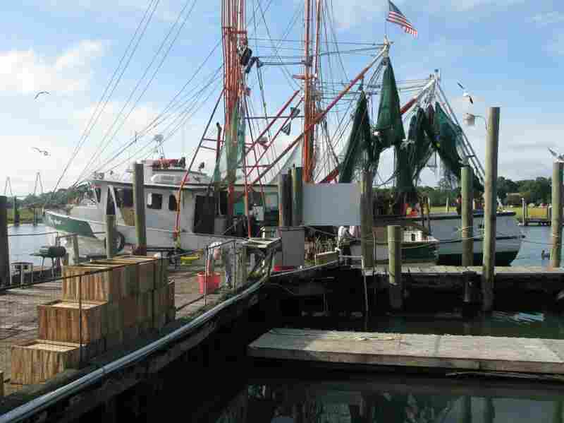 In the 1980s, more than 60 trawlers worked Shem Creek.  Today, there are six.