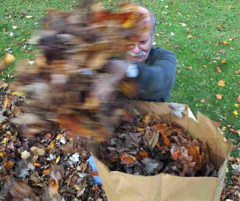 The whole family came out to help clear the yard this year.  Here, grandpa loads the bag Ian just toppled.