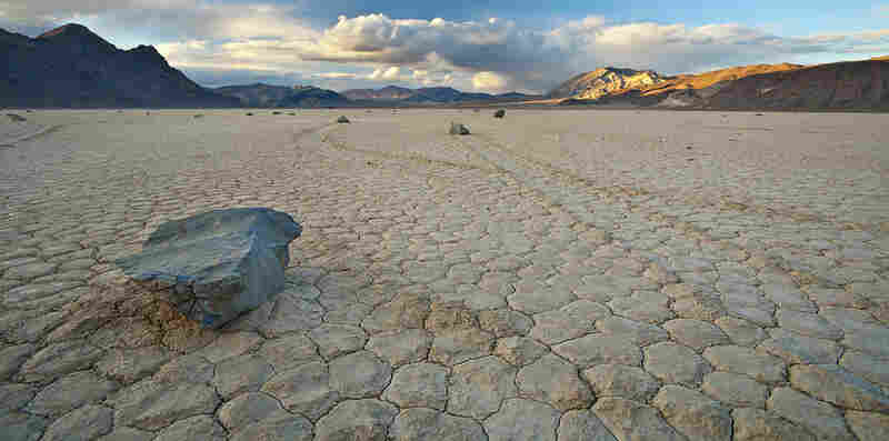 """A stone's eye view of two tracks made by the sailing stones of Death Valley's Racetrack playa."""