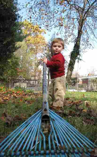 A sunny fall morning.  Ian is just 18-months-old.  The rake, however, is a 4-year veteran — with the rust and duct tape to prove it.