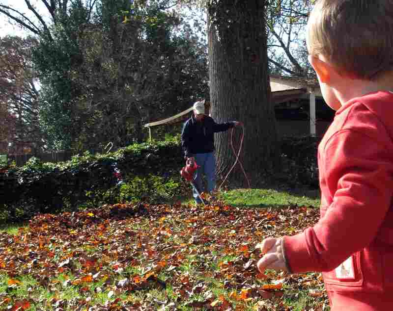 It's big, loud and red; What toddler wouldn't rather wield the leaf blower than a dusty old rake?