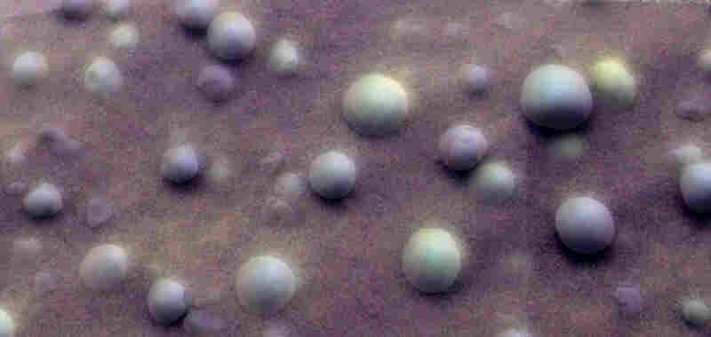 """Among the most surprising discoveries from the Opportunity rover were these small, spherical, ball-bearing-sized grains of rock that litter the ground by the millions. These are iron-rich mineral grains most likely precipitated out of ancient near-surface water on Mars. The Rover Science team dubbed these little grains """"blueberries."""""""