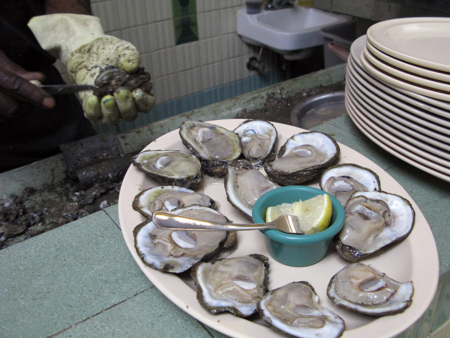 Fresh raw oysters - photo#6