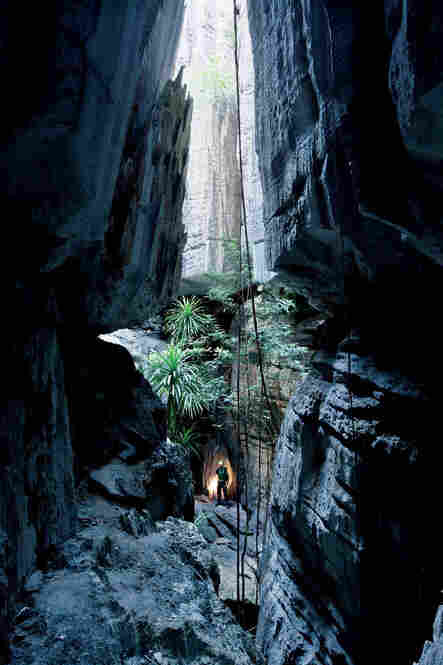 Slot canyons and wet caves cut through the neighborhoods of limestone towers.