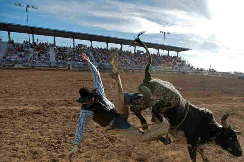 Lost Dutchman days rodeo in Apache Junction, Ariz.