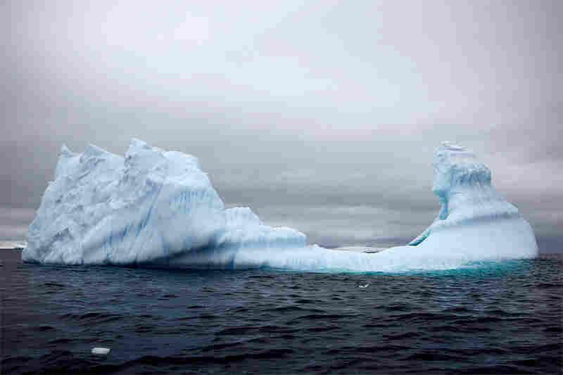 """Viking ship iceberg"""