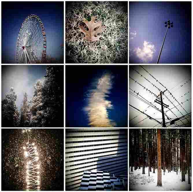 Winter – Dallas, 2008