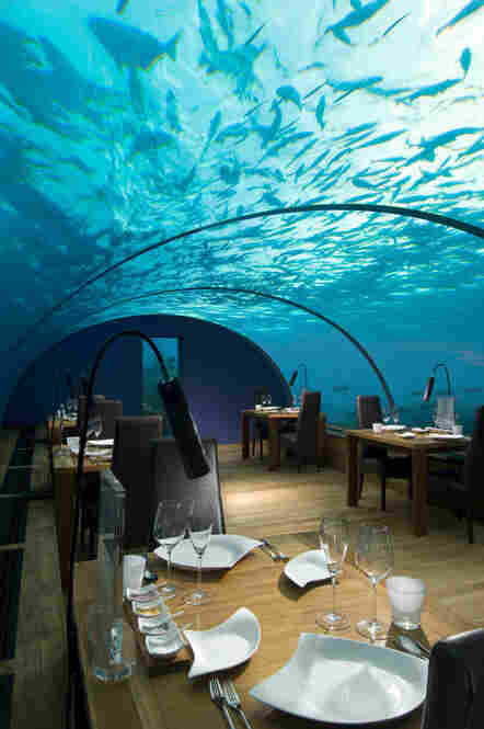 Ithaa is a restaurant located about 15 feet below sea level in Rangalifinolhu, Maldives. Tuna and tubers are main staples in the Maldivian diet.