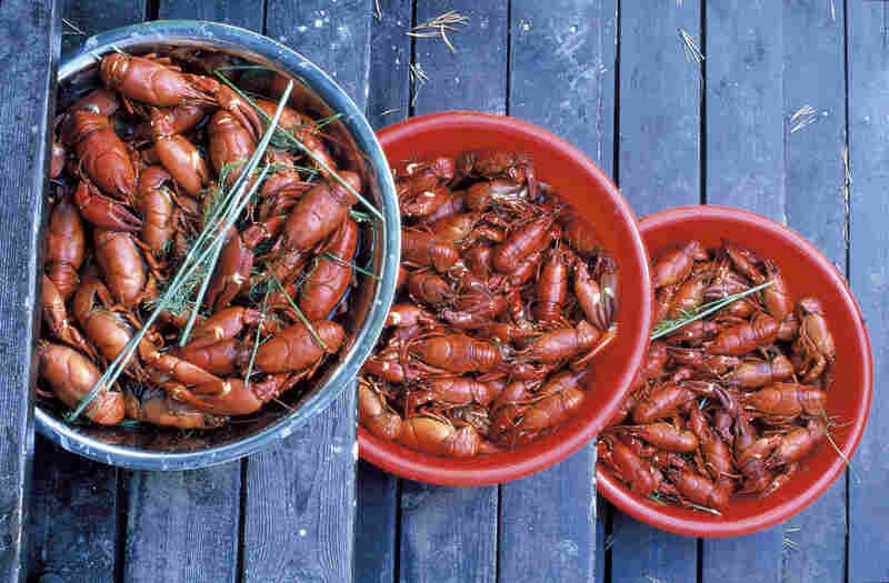 With more than 60,000 lakes and almost 800 miles of coastline, Finland's cuisine is replete with seafood, such as flame-red crayfish.