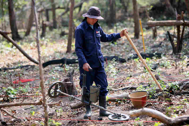 A member of the Mines Advisory Group removes unexploded ordnance from a field in Laos' Khammouane province, near the border with Vietnam. The nongovernmental organization has been working for years to remove bombs left over from the American bombing of North Vietnamese military supply trails in Laos.