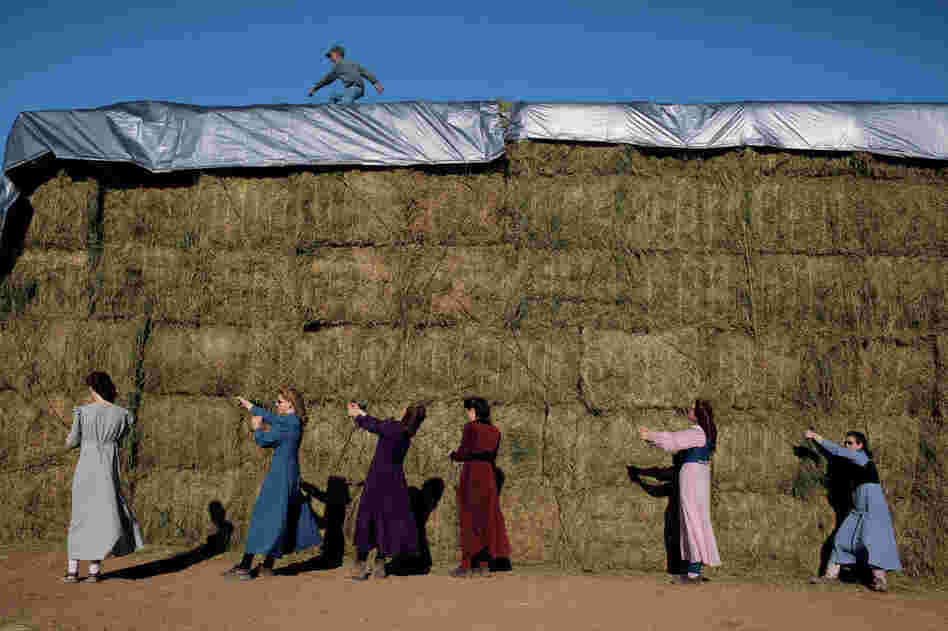 "Young FLDS women tarp the hay harvest on the church's ranch in Pony Springs, Nev. ""It's hard work, but I enjoy it,"" says Annette Jessop, 19 (at far right). Despite their conservative lifestyle, most FLDS women drive, have cell phones and are computer literate."