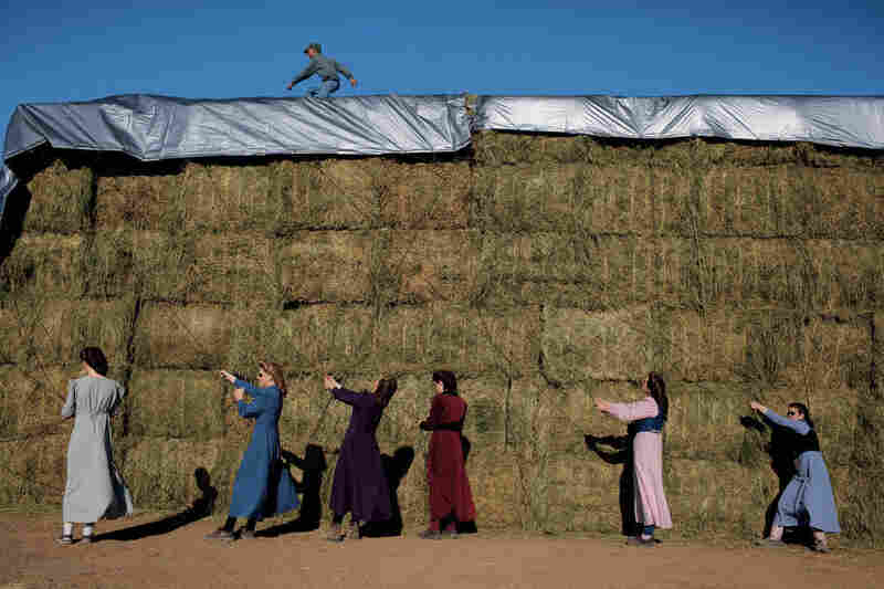 """Young FLDS women tarp the hay harvest on the church's ranch in Pony Springs, Nev. """"It's hard work, but I enjoy it,"""" says Annette Jessop, 19 (at far right). Despite their conservative lifestyle, most FLDS women drive, have cell phones and are computer literate."""