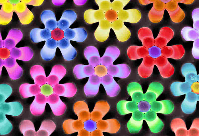 """These floral arrangements are ten-micron-tall polymer pillars used by scientists to study the forces exerted by cells. Researchers added color to the scanning microscope photo, dubbed """"Flower Power,"""" to emphasize the flowery look of the structures."""