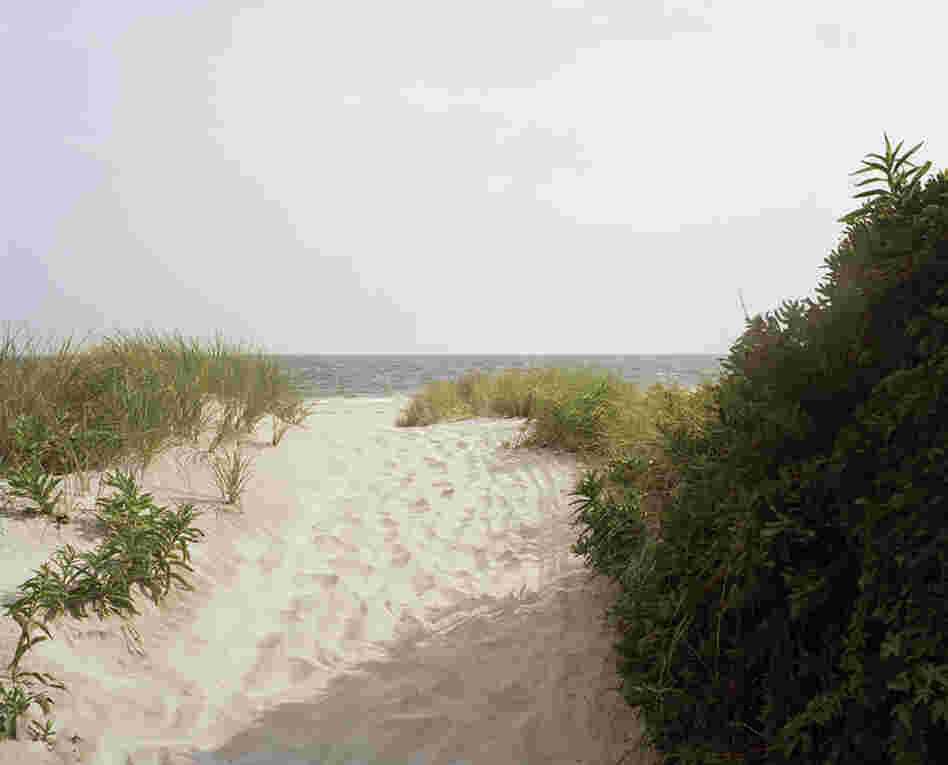 Fort Tilden, path to the water, summer