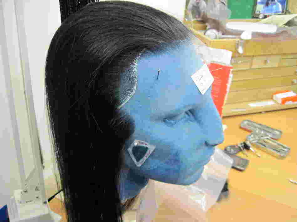 Legacy Effects, a special effects studio in California, designed the hairstyles for the characters in Avatar — the hairstyles were all fashioned out of human hair.
