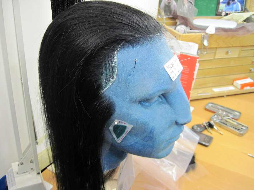 Legacy Effects, a special effects studio in California, designed the hairstyles for the characters in Avatar -- the hairstyles were all fashioned out of human hair.