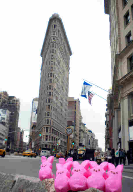 """Peepin' around Madison Square Park and the Flatiron Building."""