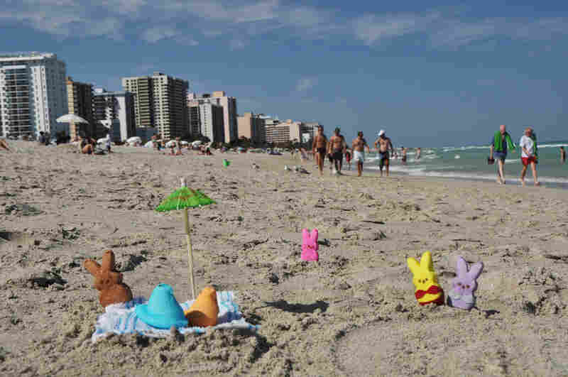 """These are the Peeps enjoying a good time at Miami's South Beach during spring break."""