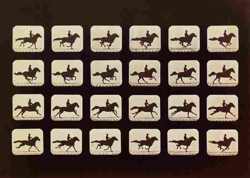Horses Running, albumen silver print, 1879.