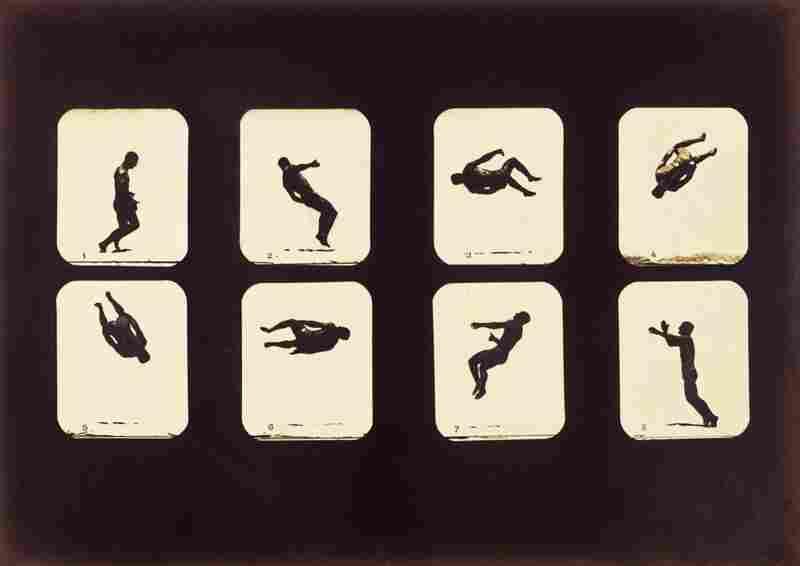 Twisting Summersault, albumen silver print, 1879.
